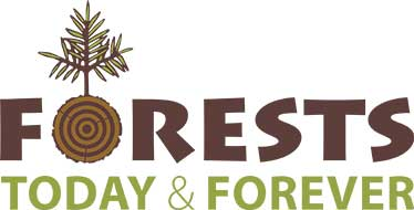 Forests Today & Forever